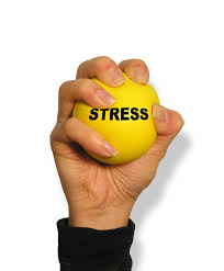 Wellness and Stress Management Training