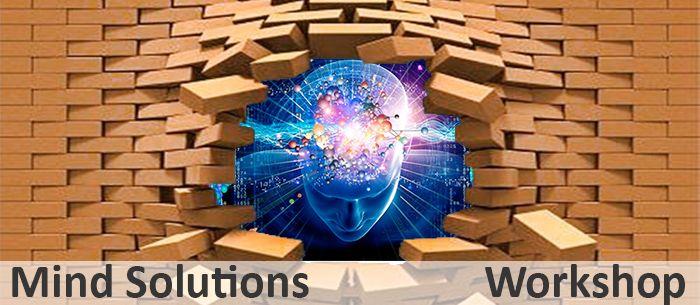 Mind Soloutions Workshop