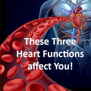 Heart functions