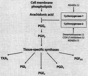 inflammation: NSAIDS